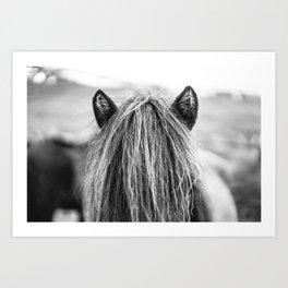 Wild Horse no. 1 Art Print