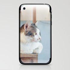 My Cat iPhone & iPod Skin