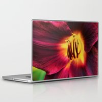 burgundy Laptop & iPad Skins featuring Burgundy Satin by hewnly