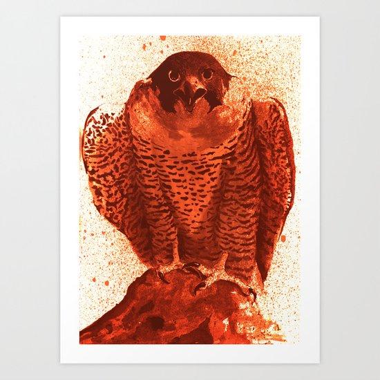 falcon 4 Art Print