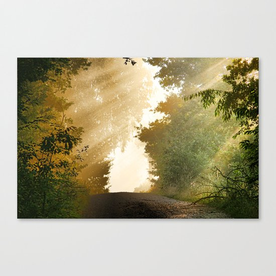 away-nature Canvas Print