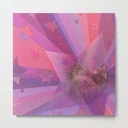 Kitty Cat Star Metal Print