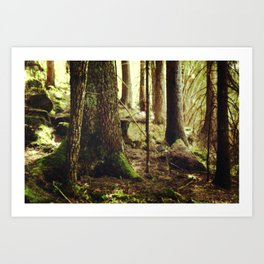 Norwegian Dream II Art Print