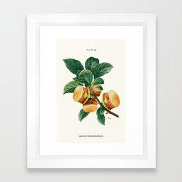 BURGER PLANT Framed Art Print