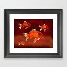 SKU-OLDEN FISH 037 Framed Art Print