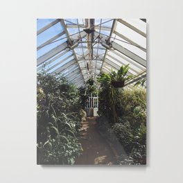 Inside the Winter Garden Metal Print