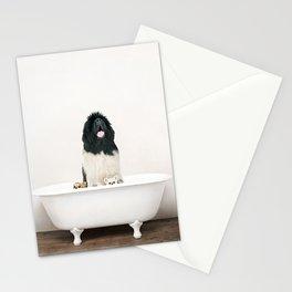 Newfoundland Dog in a Vintage Bathtub Stationery Cards