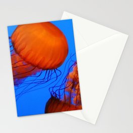 Color Jellyfish 1 Stationery Cards