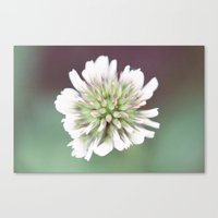 weed Canvas Prints featuring Weed by Serena Jones Photography
