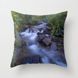 Rocky Mountain h2o Throw Pillow