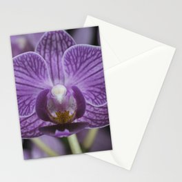 BR Orchid 001 Stationery Cards