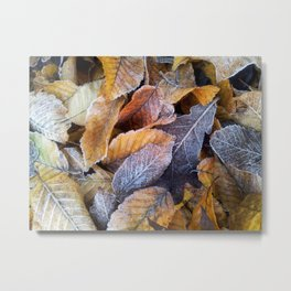 Frozen leaves Metal Print