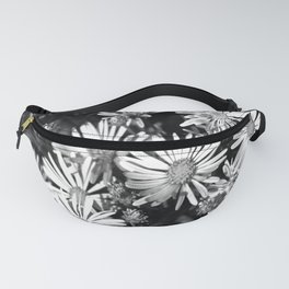 Aster Field Fanny Pack