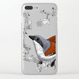 Red-Backed Shrike Clear iPhone Case