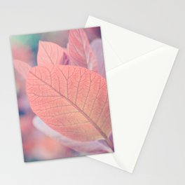 Natures Watercolor Stationery Cards
