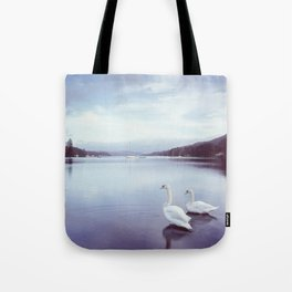 Swans on the shore of Lake Windermere at dawn. Cumbria, UK. (Shot on film). Tote Bag