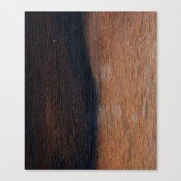 Walnut veneer brown design of wood Canvas Print
