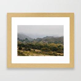 Big Sur Woods Framed Art Print