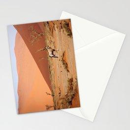 NAMIBIA ... Sossusvlei Oryx II Stationery Cards