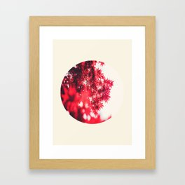Transparent Red Japanese Maple Round Photo Framed Art Print