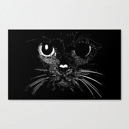 Broken Cat Canvas Print