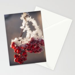 Berries in Ice Stationery Cards