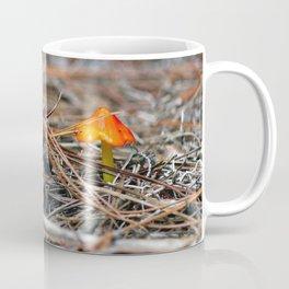 Hammock Hills Mushroom 2014 Coffee Mug