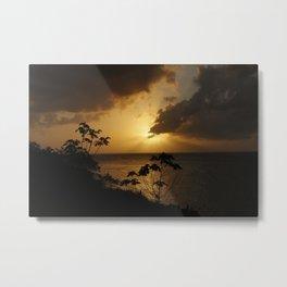 Honduran Nature #2 Metal Print