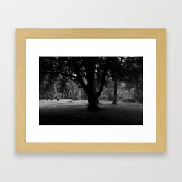 Cong Abbey - Ireland Framed Art Print