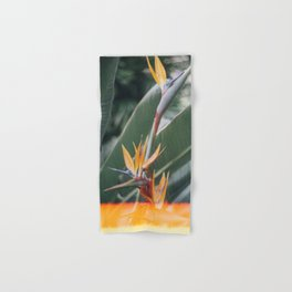 Bird of paradise Hand & Bath Towel