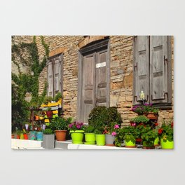 Must love plants Canvas Print