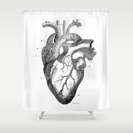Anatomic hearth engraving Shower Curtain
