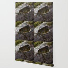 Moss & Log Wallpaper