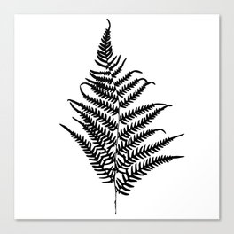 Fern silhouette. Isolated on white background Canvas Print