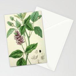 Faboideae Stationery Cards