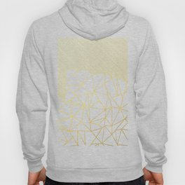 Ab Lines 45 Navy and Gold Hoody