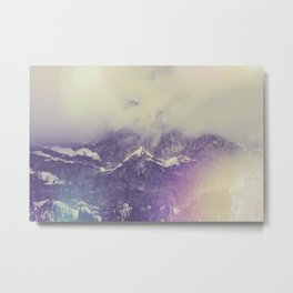 FLIMS Metal Print