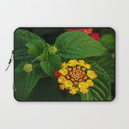 Red and Yellow Lantana Flower and Green Leaves Laptop Sleeve