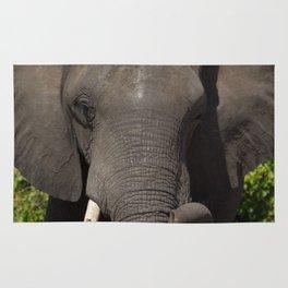 Elephant Detail Rug