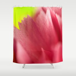 Closer Look - The Peace Collection Shower Curtain