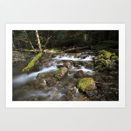 Paradise Creek I Art Print