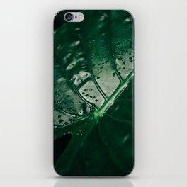 Primavera 03 iPhone Skin