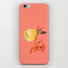 Love Birds iPhone & iPod Skin