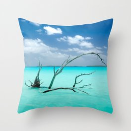 Driftwood in Lagoon Throw Pillow