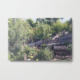 Bear Sanctuary Metal Print