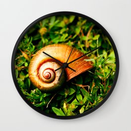 small shell between the leafs Wall Clock