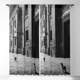 Two French Cats, Paris Left Bank black and white cityscape photograph / photography Blackout Curtain