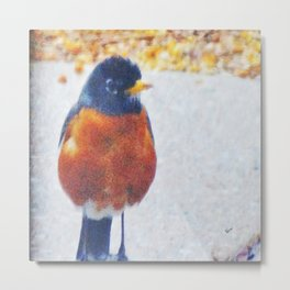 Robin in the Rain Metal Print