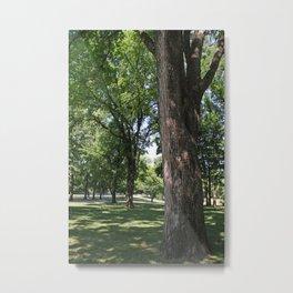 Tree at Graceland Metal Print