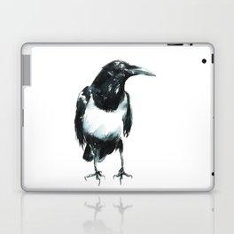 Pied Crow Laptop & iPad Skin